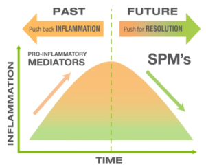 SPM Chart conveying a sense of technological progress over time.